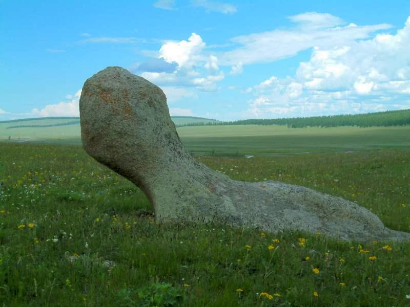 Каменный тюлень