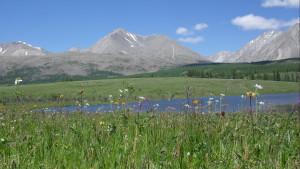 Альпийские пейзажи встречаются на подъезде к подножью пика